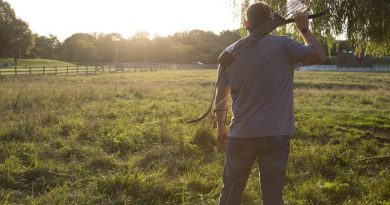 Longbow vs. Recurve: What's the Difference?