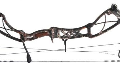 Bow Review: Xpedition Xplorer SS