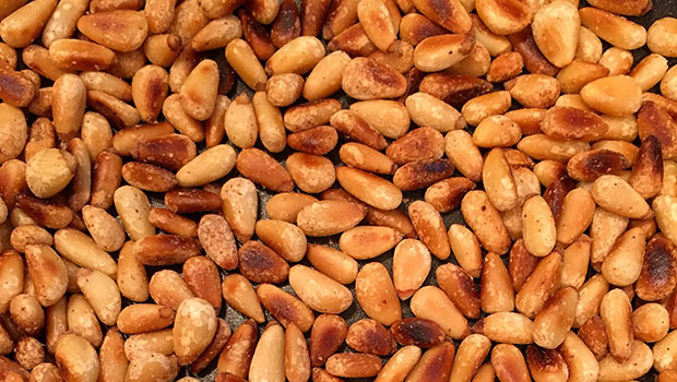 Camping Recipes with Pinyon Pine Nuts