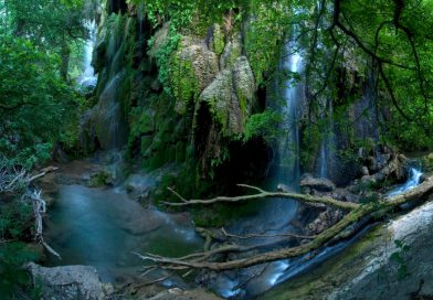 Explore the Texas Hill Country in Colorado Bend State Park