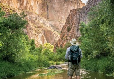 Walk on Water in the Aravaipa Canyon Wilderness