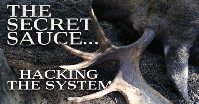 The Secret Sauce…Hacking The System