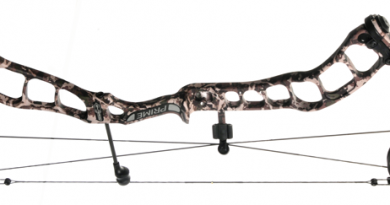Bow Review: Prime Centergy