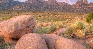 Can the Organ Mountains Survive the White House's Monument Review?