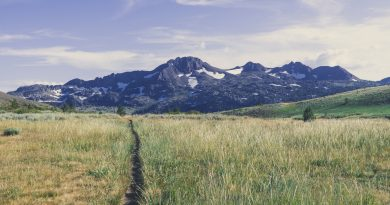 The Appalachian Trail vs. Pacific Crest Trail: Which Hike Is Right for You?
