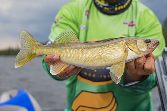 A Mecca for the Multi-Species Angler: Alyssa Lloyd