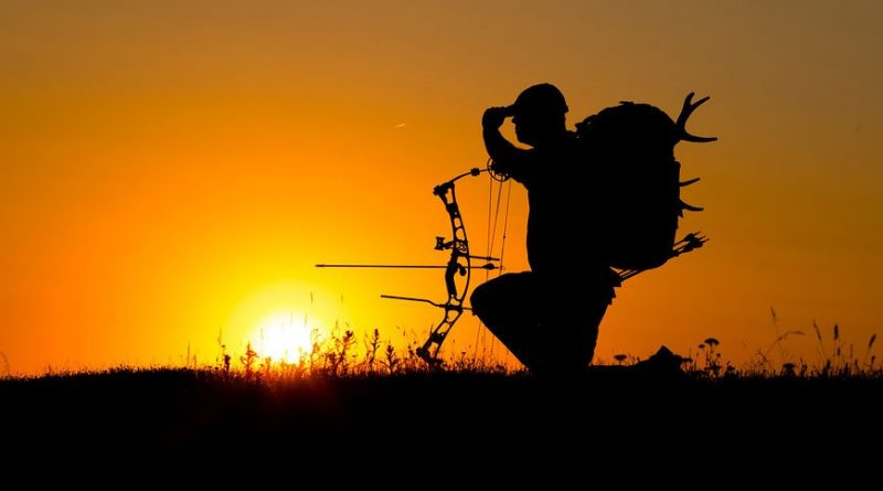 Tips for Buying Your First Bow