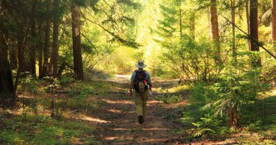 The Hike Forever Fitness Plan: Age 50-65