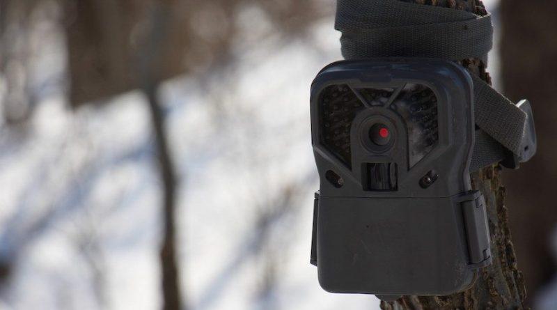 An In-Depth Look at the Exodus Trek Trail Camera