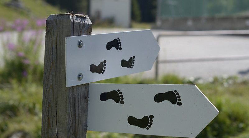 Should You Hike Barefoot?