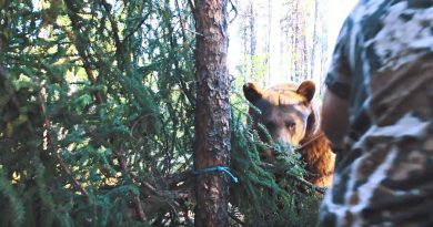 Face-to-Face with a Big Bear and Only a Recurve in Hand