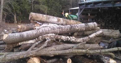 Tackling busy April of chores ahead of spring gobbler season