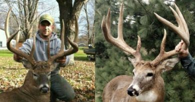#WhitetailWednesday: Feast Your Eyes on 5 of the Biggest 8-Point Bucks Ever