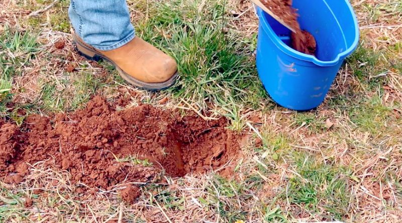Soil Samples: The First and Most Important Step in Building a Food Plot