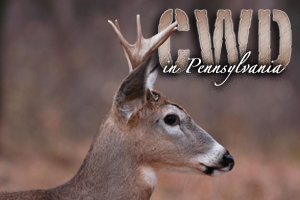 Game Commission expands CWD rules [video]
