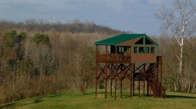 5 Luxury Deer Stands That Make Hunting Too Easy