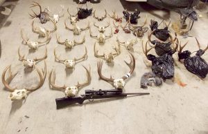 'Demented' Poaching Ring Busted in Pacific Northwest