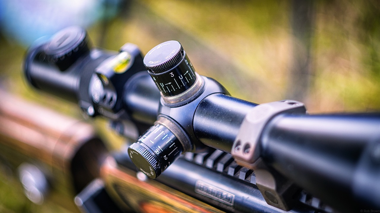 What are the Best Vortex Scopes for  243 Winchester Rifle